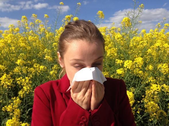 Allergie - Wirksame Therapie